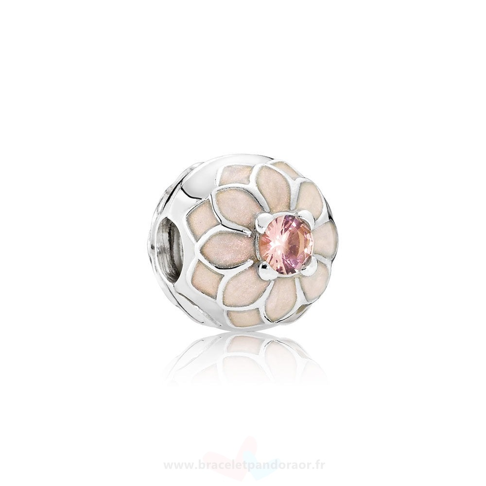 Charme Pandora Pandora Clips Breloques Blooming Dahlia Clip Creme Email Blush Rose Crystal